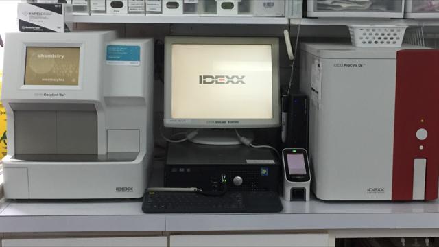 laboratoire-interne